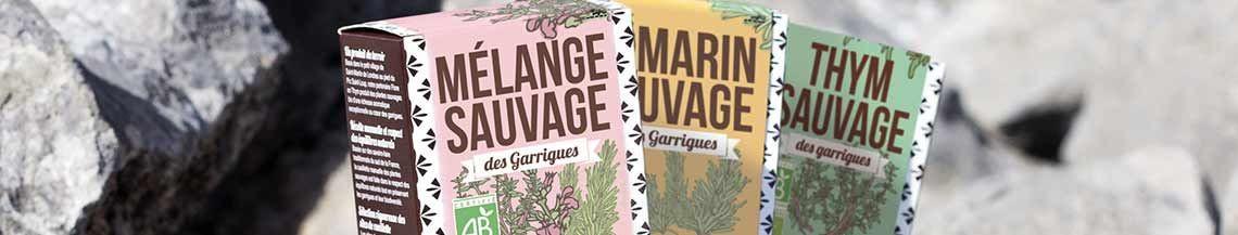 Plantes sauvages des Garrigues