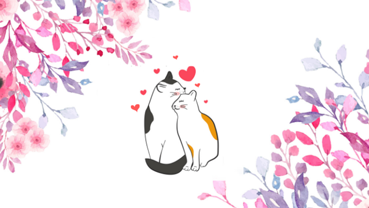 Petits chats amoureux